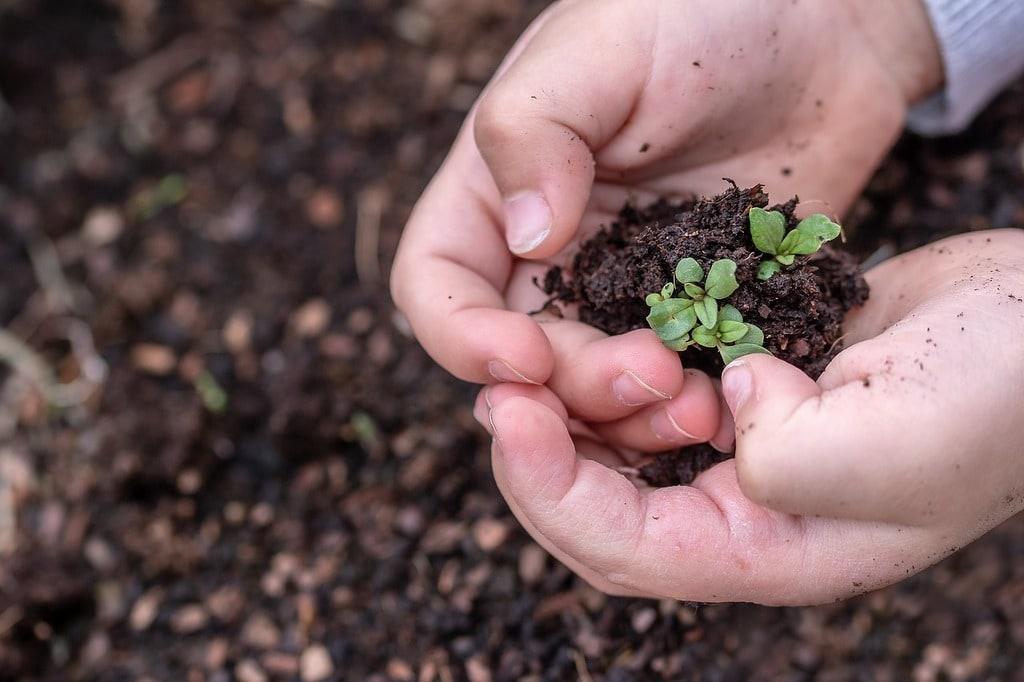 Comment apprendre à faire du compost